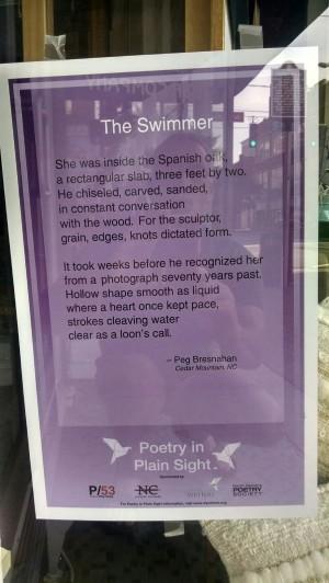 poetry-plain-sight-bresnahan