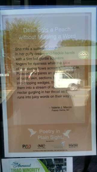 poetry-plain-sight-macon